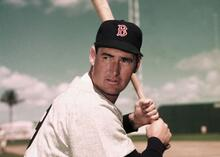 Ted Williams Science of Hitting